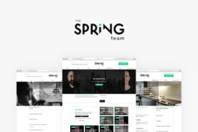 The Spring Team Case Study Digilite